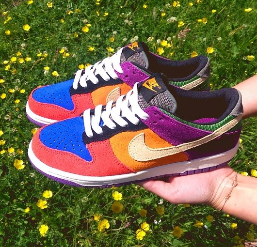 Nike Dunk Low Viotec Trainers